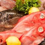 imagen Amplio surtido de pescados frescos